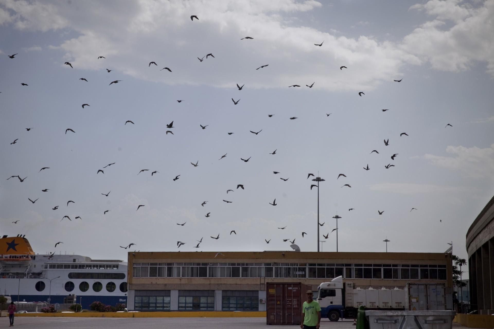 Terminal E2, à l'intérieur du bâtiment se trouve un café avec wifi. Les migrants y passent beaucoup de temps pour recharger leur téléphone et communiquer avec leur famille.